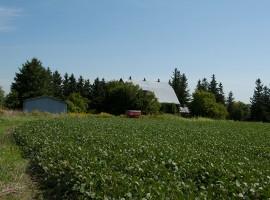 SOLD - Attention Investors  52.7 Acre Farm in Stouffville